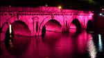 ANCeSCAO Rimini protagonista della Notte Rosa